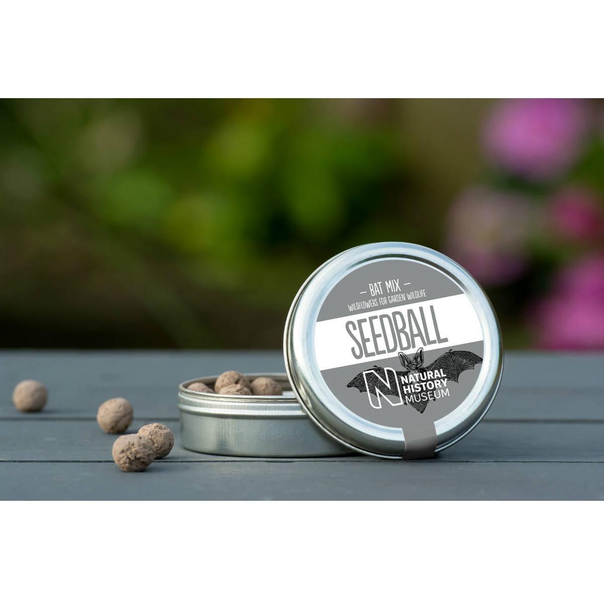 Seedball Bat Mix | Seeds for Bats | Restoration Yard