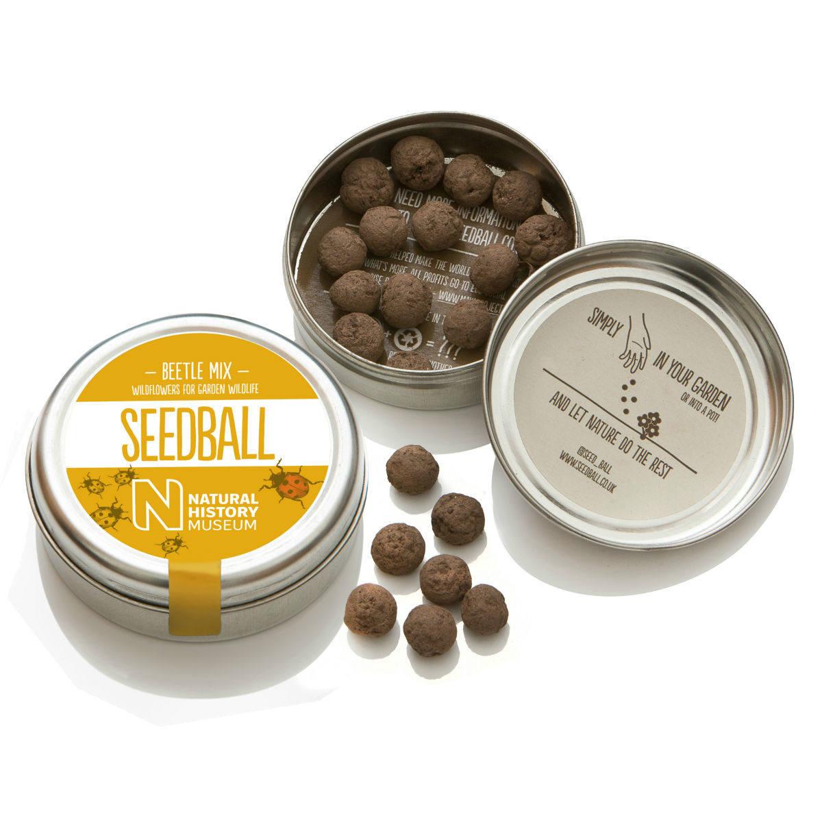 Seedball Beetle Mix | Seedball | Restoration Yard