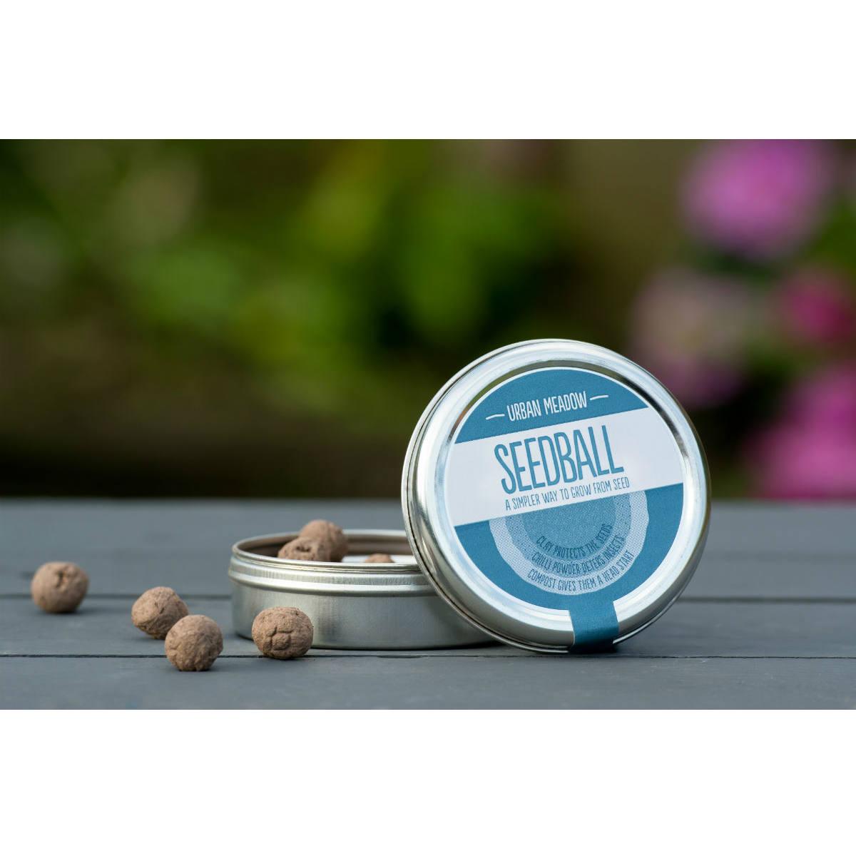 Seedball Tin Urban Meadow Mix | Restoration Yard