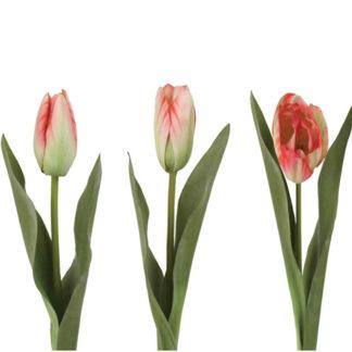Tulip Mix Multi Pink by Grand Illusions | Restoration Yard