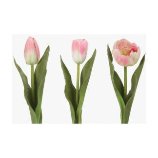 Tulip Multi Mix Light Pink by Grand Illusions | Restoration Yard