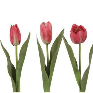 Tulip Pink by Grand Illusions | Restoration Yard