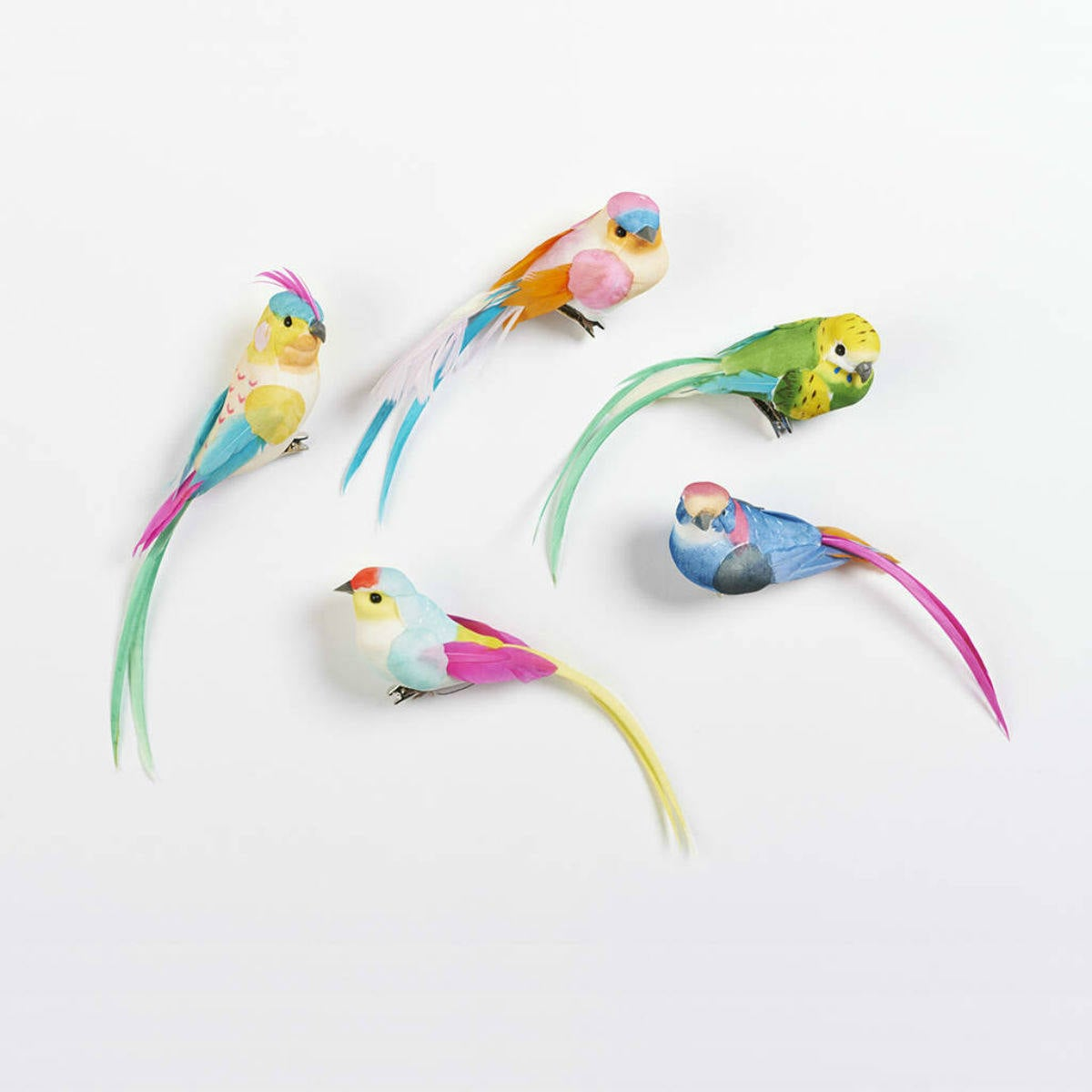 Feather Birds Clips by Petra Boase   Restoration Yard