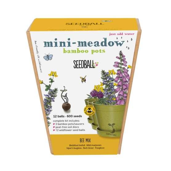 Mini Meadow Seedballs Bee Mix