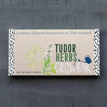 Tudor herbs growbar