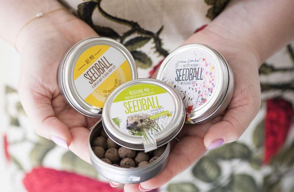 Hand displaying a selection of seedball pots
